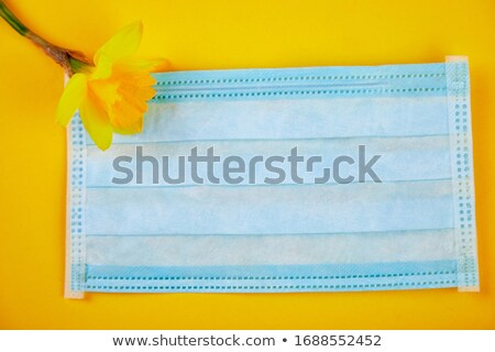 Flat lay of one narcissus flower in near protective medical mask Stock photo © Illia