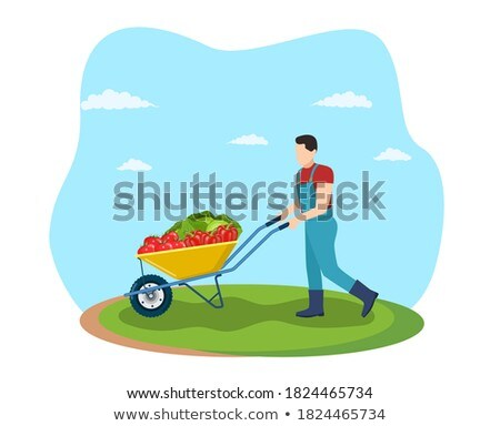 Male with Wheelbarrow Transporting Vegetables Stock photo © robuart