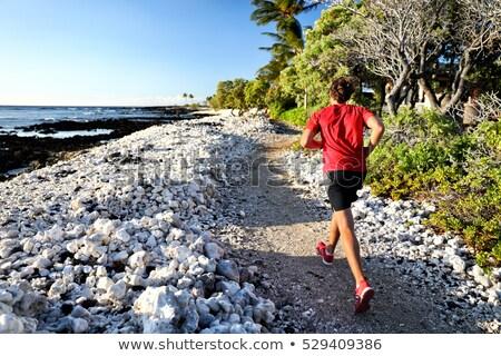 歩道 ランナー ジョギング を実行して パス ビーチ ストックフォト © Maridav