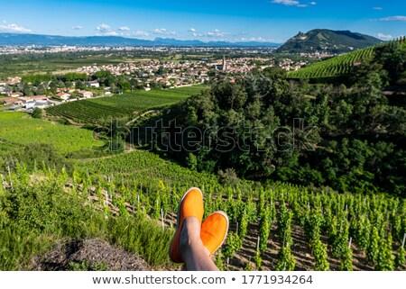 Orange espadrilles Stock photo © photography33