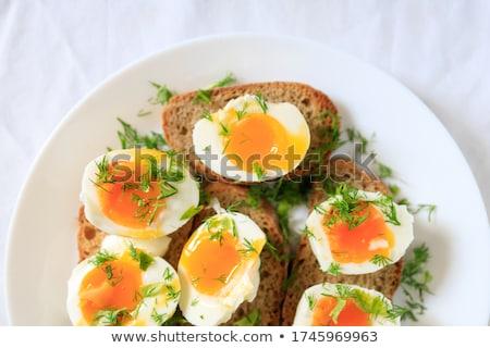 toasted whole grain bread Stock photo © Digifoodstock