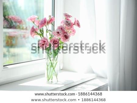закрывается · цветок · синий · ваза · окна · оранжевый - Сток-фото © ruslanshramko