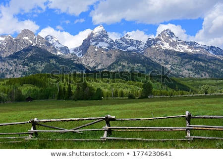 Magnificent Tetons Stock photo © emattil