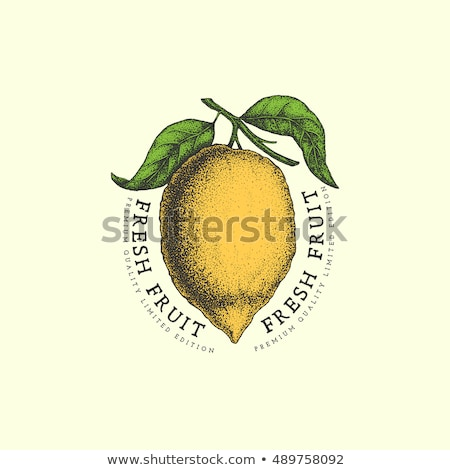 Foto stock: Cor · vintage · fruto · emblema · ameixa · eps