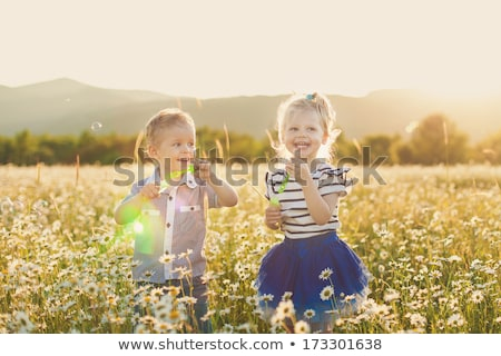 Little brother and sister playing in the grass on sunset in summer Stock photo © Lopolo