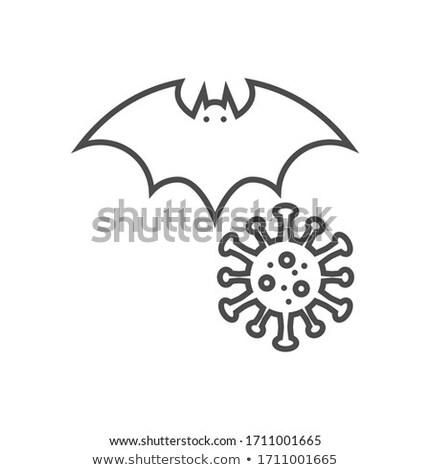 Bat carrier of coronavirus related vector thin line icon Stock photo © smoki