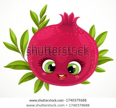Felice melograno cartoon isolato frutta carattere Foto d'archivio © barsrsind