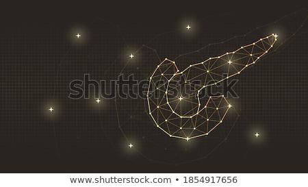Absztrakt mértani technológia vektor terv illusztráció Stock fotó © SArts