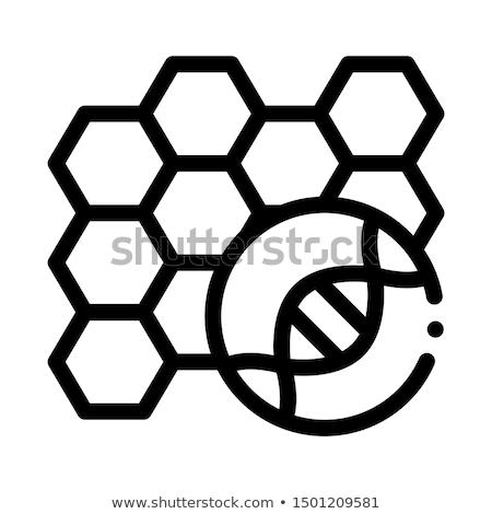 Moleküler vektör ikon ince hat biyoloji Stok fotoğraf © pikepicture