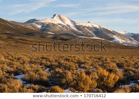 пейзаж · горные · далеко · расстояние · горизонте · снега - Сток-фото © cboswell