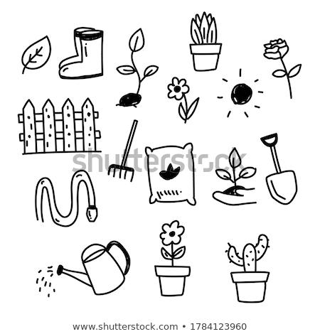 ecology doodle icons stock photo © conceptcafe