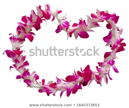 Necklace with orchids Stock photo © blackmoon979