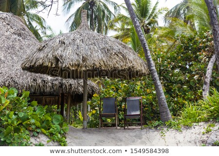 Sunshade on the tropical beach at Santa Marta, Colombia Stock photo © boggy