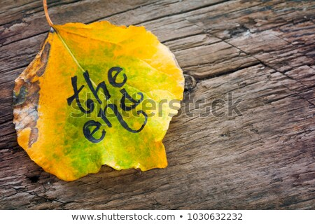Yellow and green leaf with the inscription THE END on the old wooden background Stock photo © galitskaya