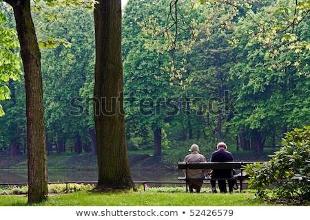 Pessoas sessão banco outono parque casal velho Foto stock © robuart