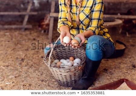 Stolz Huhn Landwirt Eier Frau Stock foto © Kzenon