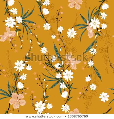 蘭 花 咲く 抽象的な フローラル 芸術 ストックフォト © Anneleven