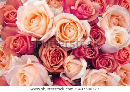 Romantikus luxus virágcsokor rózsaszín rózsák virágok Stock fotó © Anneleven