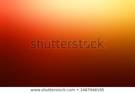 цветами цвета тенденция год красный карт Сток-фото © CarmenSteiner