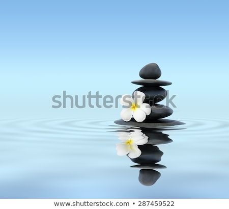 Zen balanced stones stack with plumeria flower Stock photo © dmitry_rukhlenko