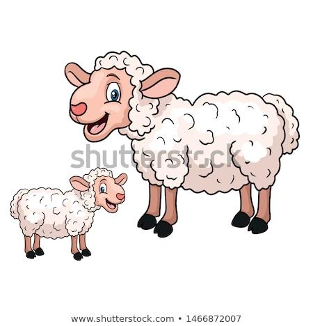 Karikatur · schafe vektor lamm funny baby