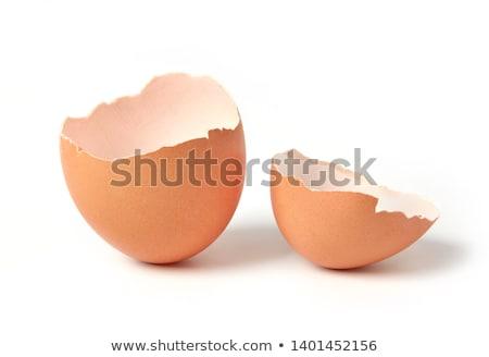 卵 シェル 壊れた 空っぽ 白 影 ストックフォト © ruigsantos