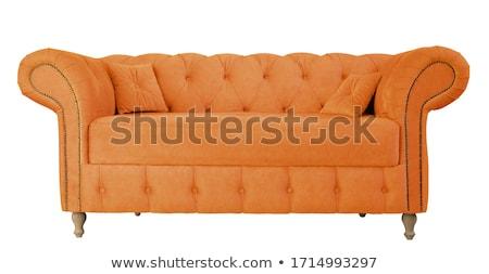 Orange canapé intérieur usine maison Photo stock © Ciklamen