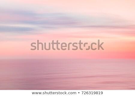 морем · закат · пастельный · Nice · цветами · солнце - Сток-фото © kaycee
