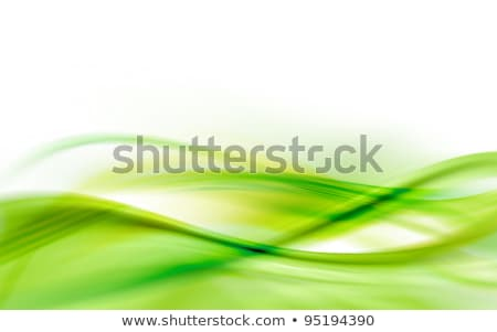 Green wavy background with white copy space. stock photo © lenapix