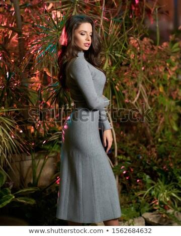 Mooie brunette grijs jurk aanraken haren Stockfoto © acidgrey