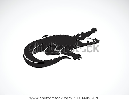 Vector icon alligator vruchten speelgoed Stockfoto © zzve