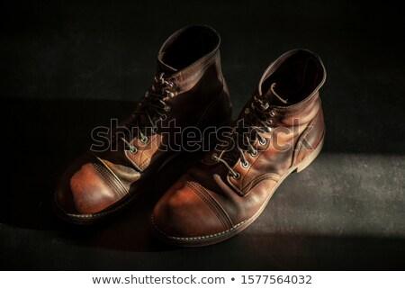 elegant brown leather mens shoes stock photo © justinb