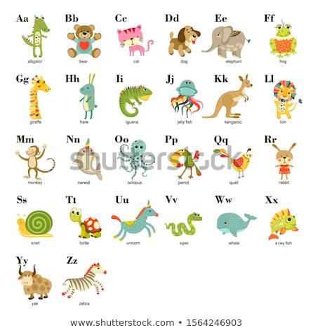 животного алфавит фон искусства письме исследование Сток-фото © kariiika