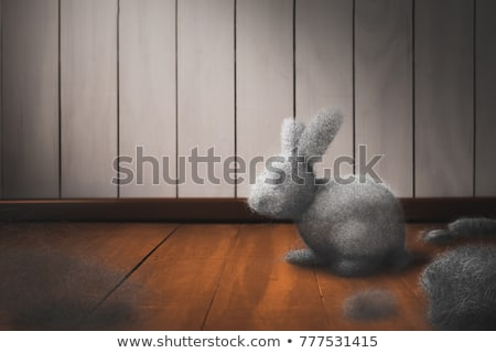 Stock photo: Dust Bunny