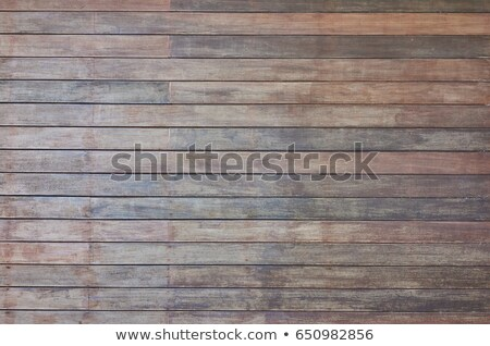 Grey wooden wall. Macro shot. stock photo © d13
