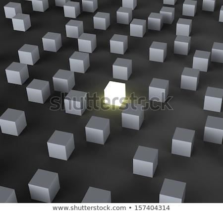 Distinct Block Shows Standing Out Stock photo © stuartmiles