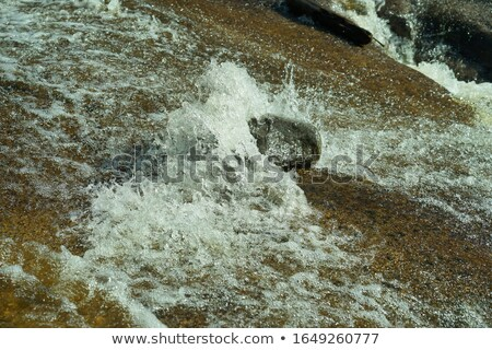 Flowing river flow over riffles and rocks Stock photo © vetdoctor