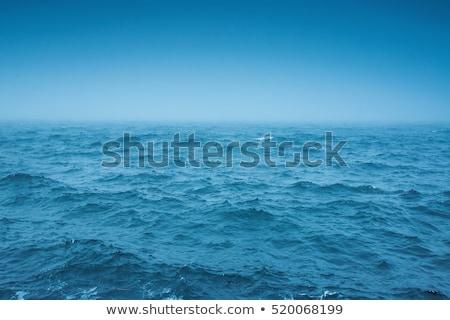 reflexão · piscina · água · azul · terreno · fundo - foto stock © cherezoff