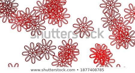 Сток-фото: Abstarct Red Roses