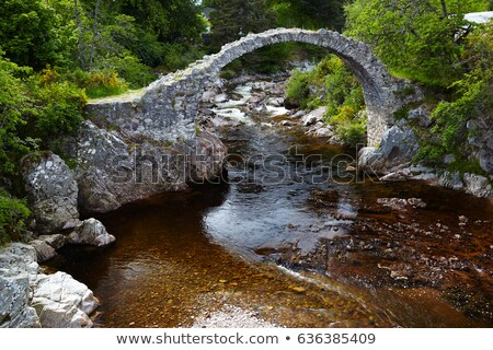old packhorse bridge carrbridge highlands scotland stock photo © phbcz