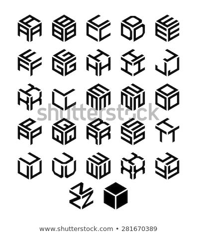 Kocka logoterv vektor üzlet fekete siker Stock fotó © burakowski