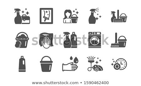 Schoonmaken iconen vector ingesteld gestileerde tools Stockfoto © vectorpro
