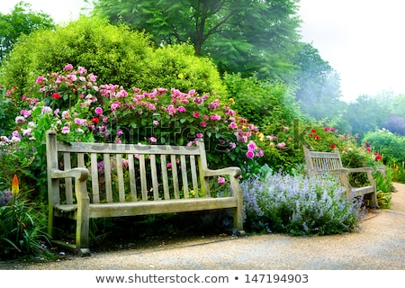 houten · bank · heldere · bloemen · tuin - stockfoto © julietphotography