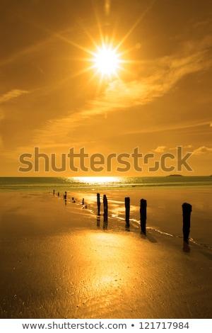 日照 · 海岸 · ビーチ · コルク · アイルランド - ストックフォト © morrbyte