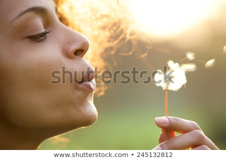 beautiful woman blowing on dandelion in the garden stock photo © deandrobot