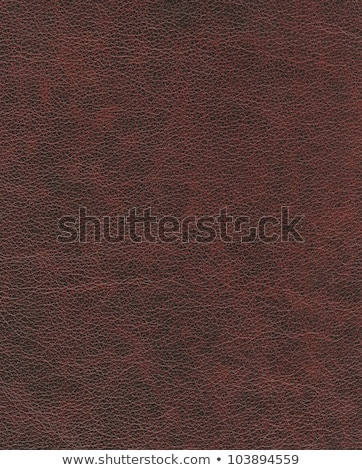 ストックフォト: 赤 · ソフト · 革 · カバー · 図書 · 孤立した