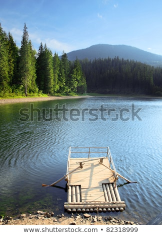 plate-forme · lac · parc · ciel · arbre - photo stock © romvo
