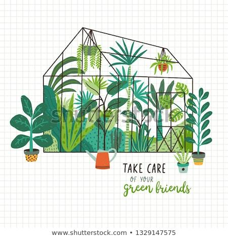植生 メッセージ 葉 緑の葉 自然 葉 ストックフォト © fuzzbones0
