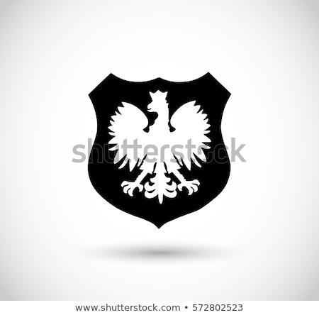 コート · 腕 · ポーランド · 画像 · スポーツ · フラグ - ストックフォト © netkov1
