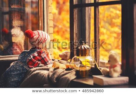 red autumn leaves on the windows stock photo © kotenko
